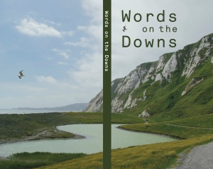 words on the downs cover draft